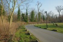 Ici la route délimite la future zone aménagée (à gauche) de l'hôpital (à droite)